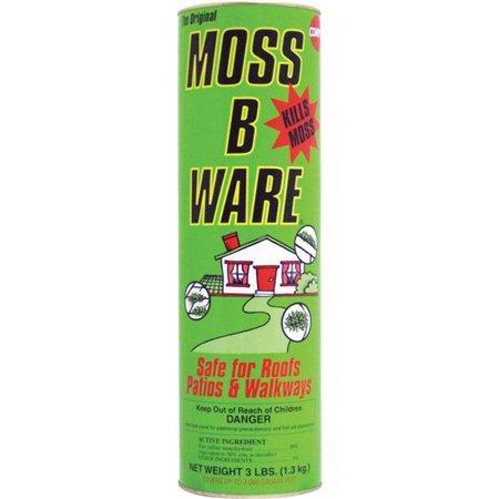 Moss-Prevention-Seattle-WA